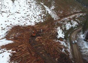Forest Operations: Avalanche Safety Plan, Avalanche Risk Assessments and Operational Avalanche Safety Program