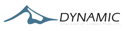 Dynamic Avalanche Consulting Ltd. Logo
